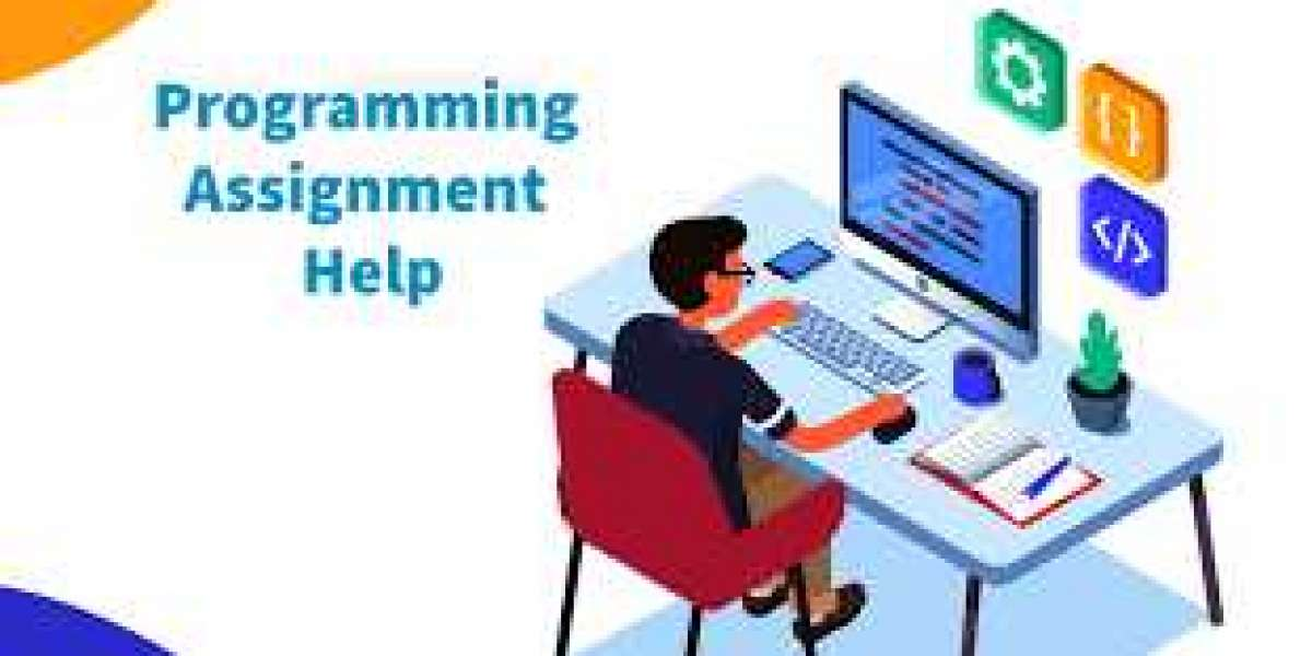 What is a programming assignment help?