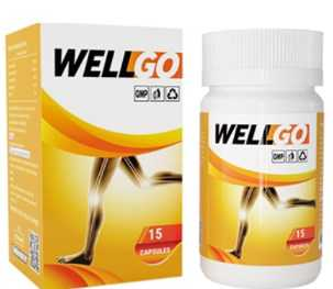 wellgo review